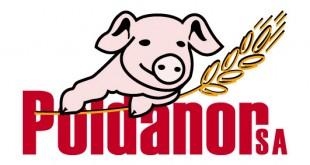 Poldanor Logo