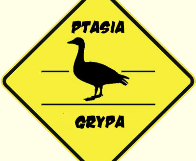 ptasiagrypa